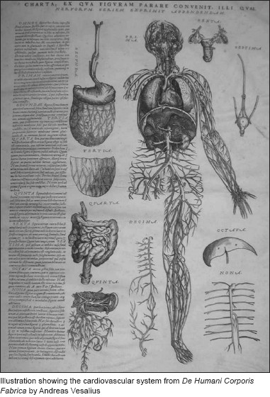 The Anatomical Illustrations In Book Are Truly Outstanding Their Skill Of Execution And Artistry Frank Netter